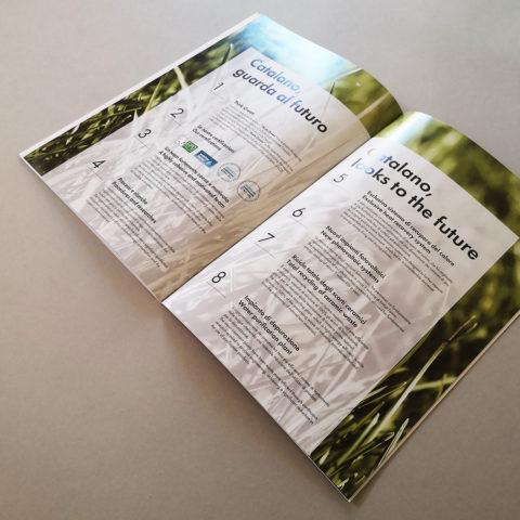 brochure-900x900_6