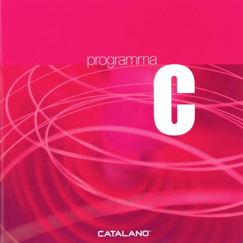 communication-2004-catalano_3