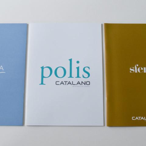 communication2011catalano_3