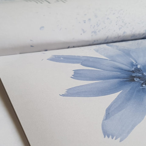 Brochure Colori_04